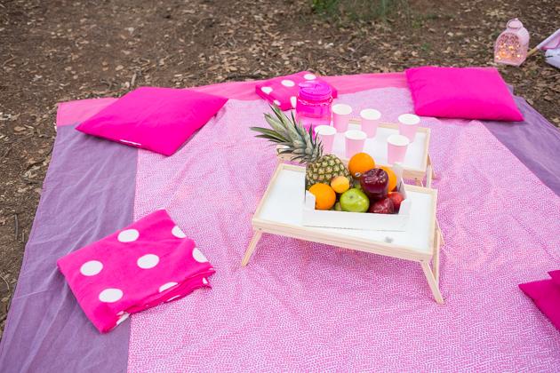 mantel-tipi-picnic
